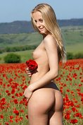 Perfect blonde teen Tess is naked in the poppy field