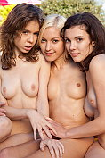 Three adorable kitties showing off their lesbian inclinations as they sexually pose naked
